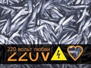 Художники подарили Одессе 220 Vольт Любви