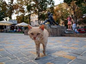 Одесский сквер имени Веры Холодной приводят в порядок (ФОТО)