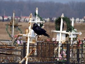 У кладбищ Одессы появился новый начальник
