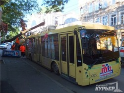 В центре Одессы на троллейбус упало дерево (ФОТО)