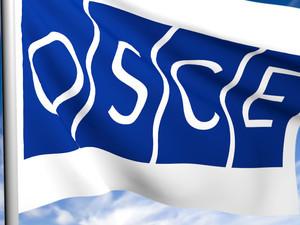 Наблюдатели ОБСЕ помогут предотвратить нападения на кандидатов от оппозиции