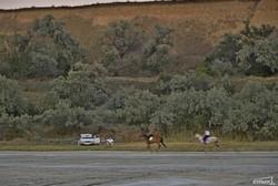Кто быстрее спасет Куяльник: дожди или труба? (ФОТО)