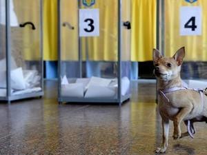 Нынешние выборы могут стать самыми грязными за всю историю независимой Украины
