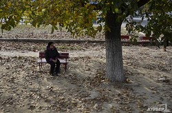 Одесские трамвайные остановки: бельгийские павильоны, навесы и просто скамейки (ФОТО)