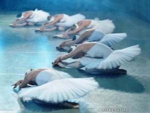 Застывший балет на выставке Кирилла Стоянова