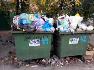 Черемушки утопают в мусоре, коммунальщики проблем не видят
