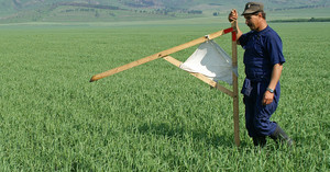 В Одесской области за закупками земли можно будет следить в режиме онлайн