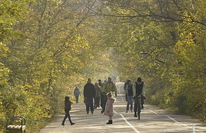 Одесский облсовет считает недопустимым движение автотранспорта по Трассе Здоровья
