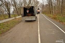 Пешеходные дорожки Трассы Здоровья и Парка Шевченко превратились в грязные дороги