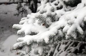 Одессу продолжает заметать снегом