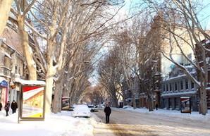 Одесса после бури: снег. отсутствие транспорта (ФОТО)