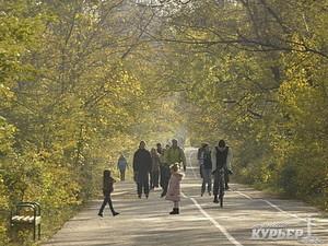 Одесский горсовет рассмотрит рекомендации общественных слушаний по продлению Трассы Здоровья и закрытию автостоянок у моря