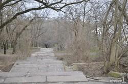 """Парк """"Юбилейный"""" на одесских склонах у моря: грязь и запустение (ФОТОРЕПОРТАЖ)"""