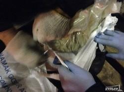 В Одессе перехватили 147 килограммов героина (ФОТО)