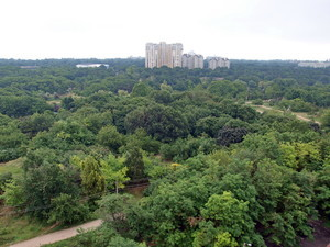 Одесские парки начинают получать границы