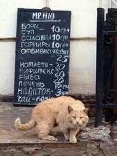 В одесских забегаловках растут цены (КОТОФАКТ)
