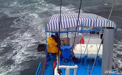 """Кораблекрушение """"Иволги"""" в Затоке: капитан затонувшего катера пытался сбежать (ФОТО, ВИДЕО)"""