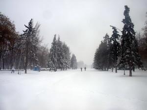 В Одесской области спасатели извлекли из снежных заносов почти тысячу человек