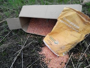 В Измаиле в плавнях выбрасывают отравленное зерно: гибнут птицы и рыба