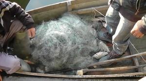 В Одесской области задержали браконьеров на озере Кагул