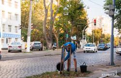 На Французском бульваре одесситы полили деревья (ФОТО)