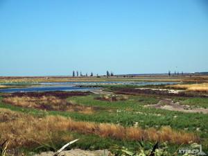 На спасение Тилигульского лимана выделят 58 миллионов