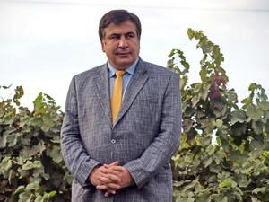 Партия одесского губернатора набрала всего четверть голосов на выборах в Грузии