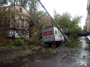 В центре Одессы рухнувшее дерево раздавило грузовик (ФОТО)