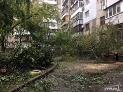 Приморский район Одессы после урагана: заблокированные трамваи и бурелом (ФОТО)