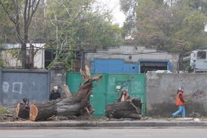 Пересыпь после урагана: коммунальщики работают в усиленном режиме (ФОТО)