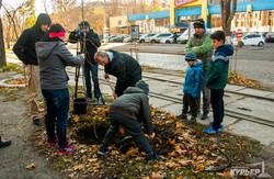 Одесситы посадили деревья на Французском бульваре (ФОТО)