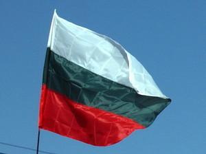Выборы в Болгарии: побеждает пророссийски настроенный генерал