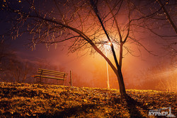 Туманный вечер в Одесском парке (ФОТО)