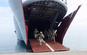 Морская пехота провела учебный десант на берегах Дуная в Одесской области (ФОТО)