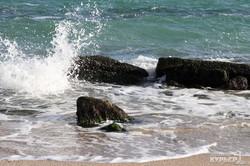 Зимнее море: затонувшая яхта, чайки, волны (ФОТО)