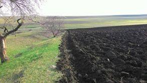 Хозяйственный суд Одесской области запретил распашку  Тарутинской степи