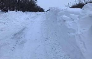 Непогода в Одесской области: жители региона помогают спасателям расчищать дороги от снега (ФОТО)