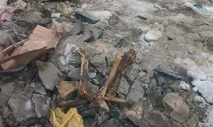 В Одессе под Потемкинской лестницей нашли скелет человека (ФОТО)