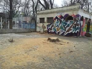 В одесском Старобазарном сквере спилили деревья (ФОТО)