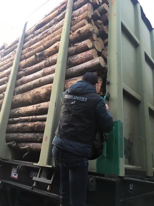 """Сотрудники СБУ арестовали крупную партию очередной """"лесной контрабанды"""""""
