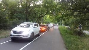 Одесский исполком планирует запустить автомобили на Трассу Здоровья