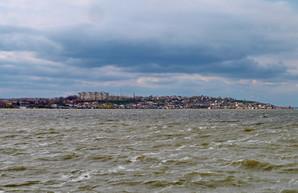 Одесская весна: шторм на Хаджибее и цветы Шкодовой горы (ФОТО)