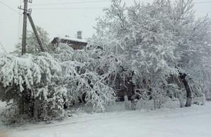 Север Одесской области завален снегом: апрельская зима