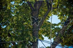 На Дерибасовской устанавливают новый декор в виде бабочек (ФОТО)