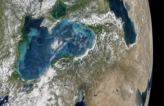 """На космических снимках Черного моря видно """"цветение"""" воды около побережья Одесской области"""