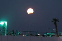 Лунное затмение над одесским Ланжероном (ФОТО)