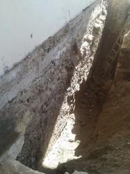 Реконструкция усадьбы князя Воронцова: найдены неизвестное подземелье и табличка румынских оккупантов (ФОТО)