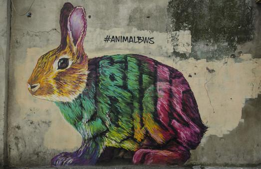 Одесскую улицу украсил почти рождественский заяц