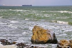 Зима в Одессе: замерзшая набережная, штормовое море и котики
