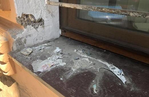 В Одессе украли кота Жванецкого